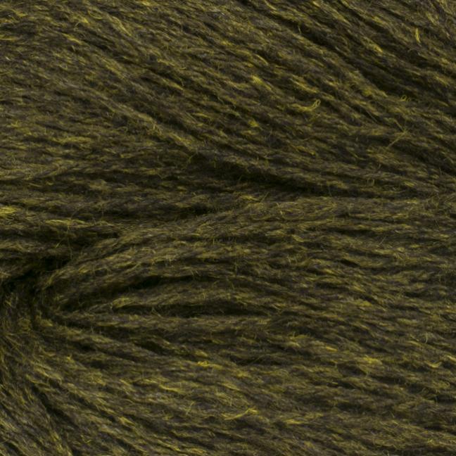 BC Garn Colori moss